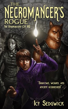 Susie Dinneen Review The Necromancer's Rogue